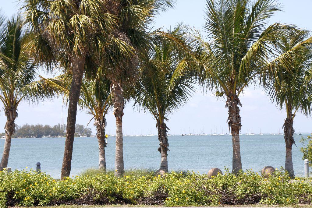 Florida-112.jpg