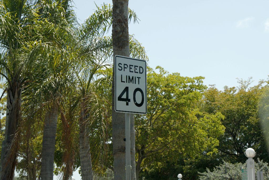 Florida-113.jpg