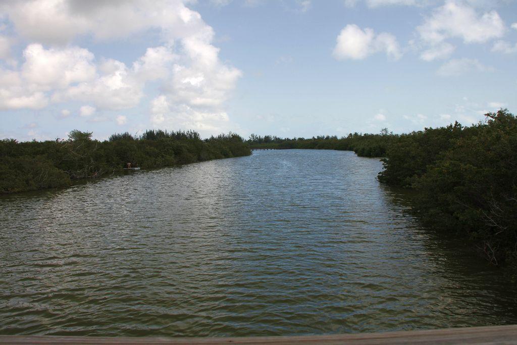 Florida-196.jpg
