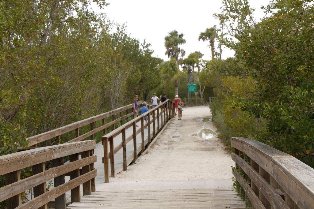Florida-197.jpg
