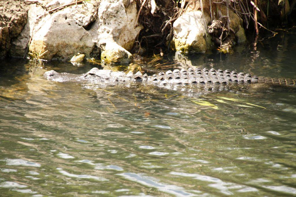 Florida-224.jpg