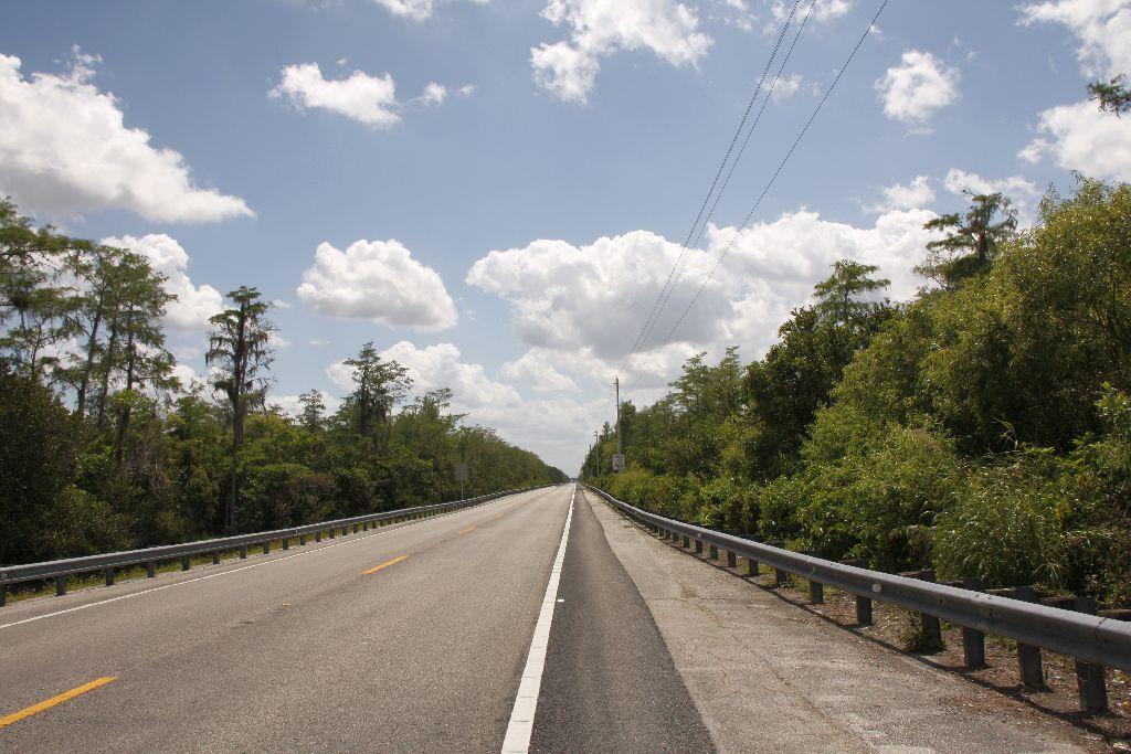 Florida-233.jpg