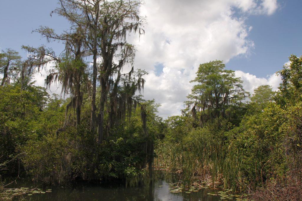 Florida-235.jpg