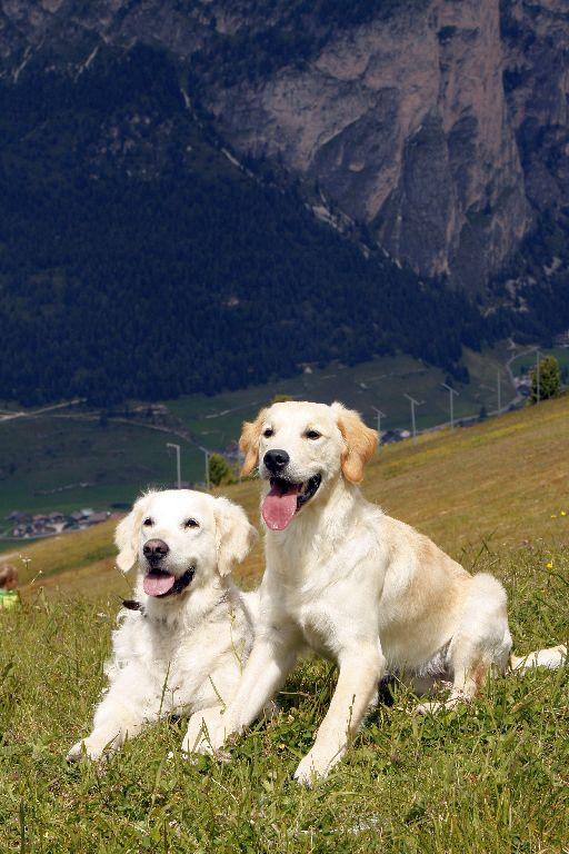Südtirol-168.jpg