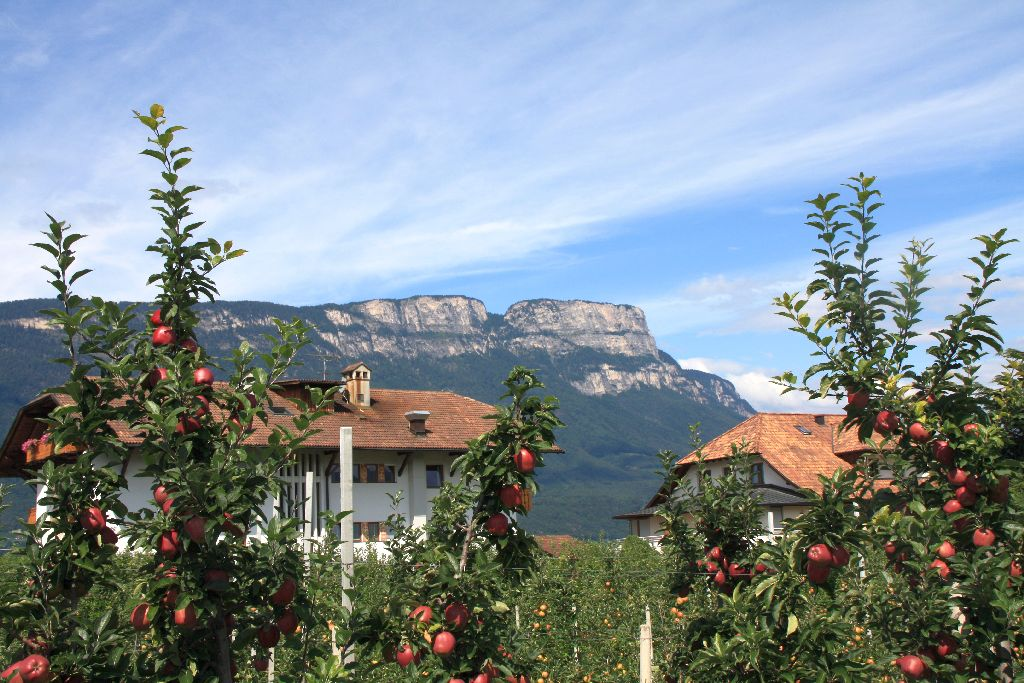Südtirol-2.jpg