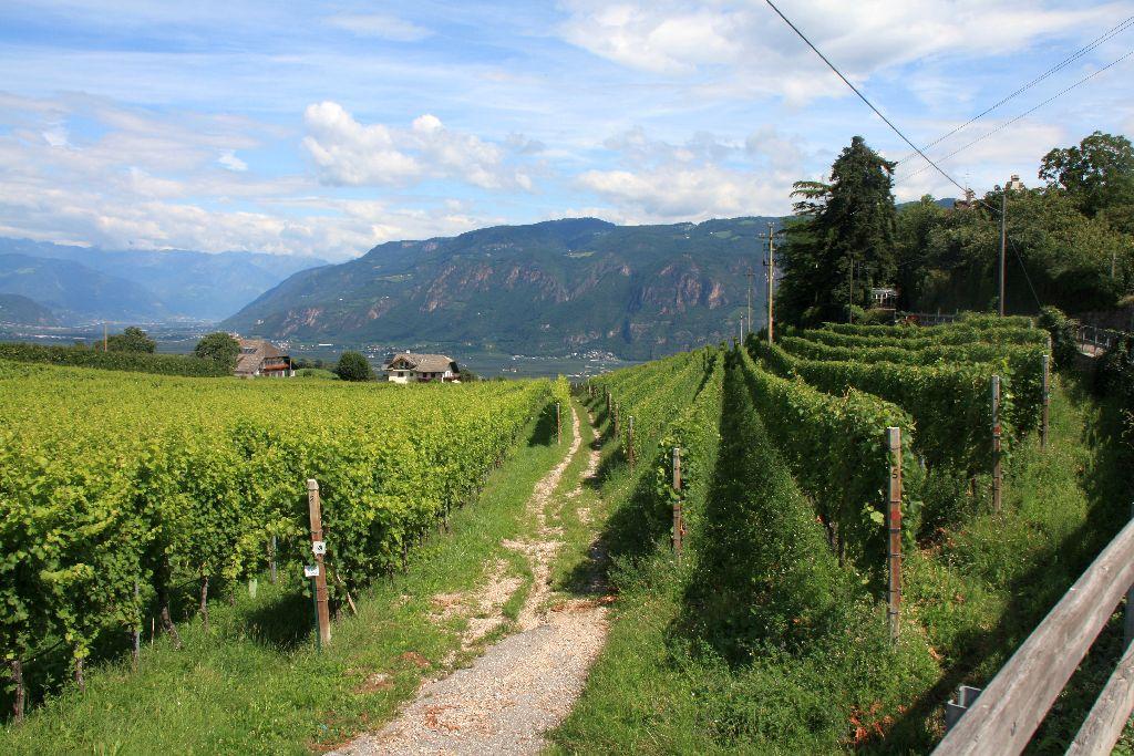 Südtirol-8.jpg