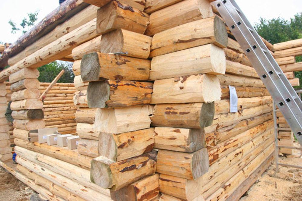 Meine selbstgebaute jagdh tte grillforum und bbq www for Liegewiese selber bauen