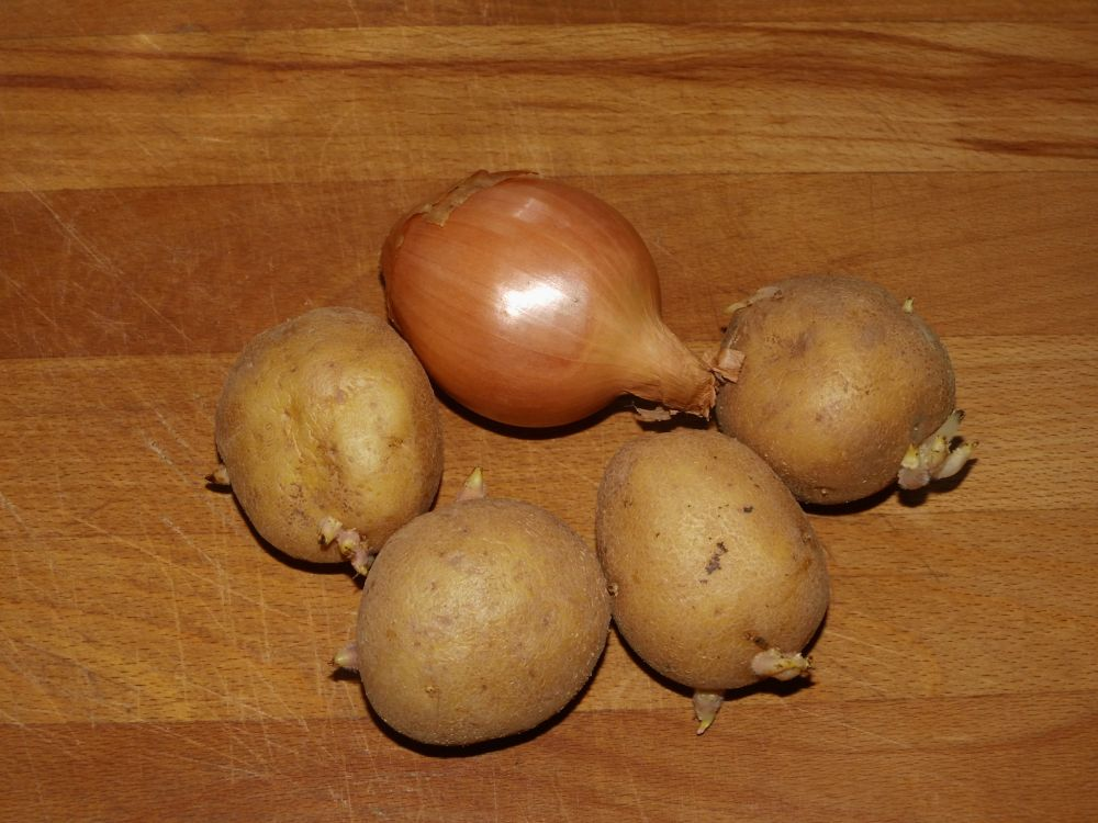 01_Kartoffeln+Zwiebel.jpg