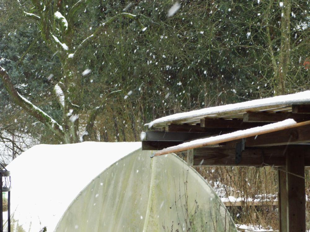 04_Schneetreiben.jpg