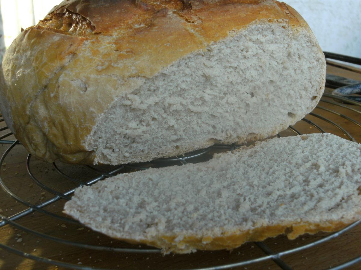 1.DO Brot.jpg