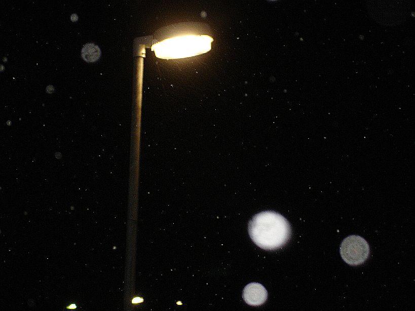 2010-01_PP-026.jpg