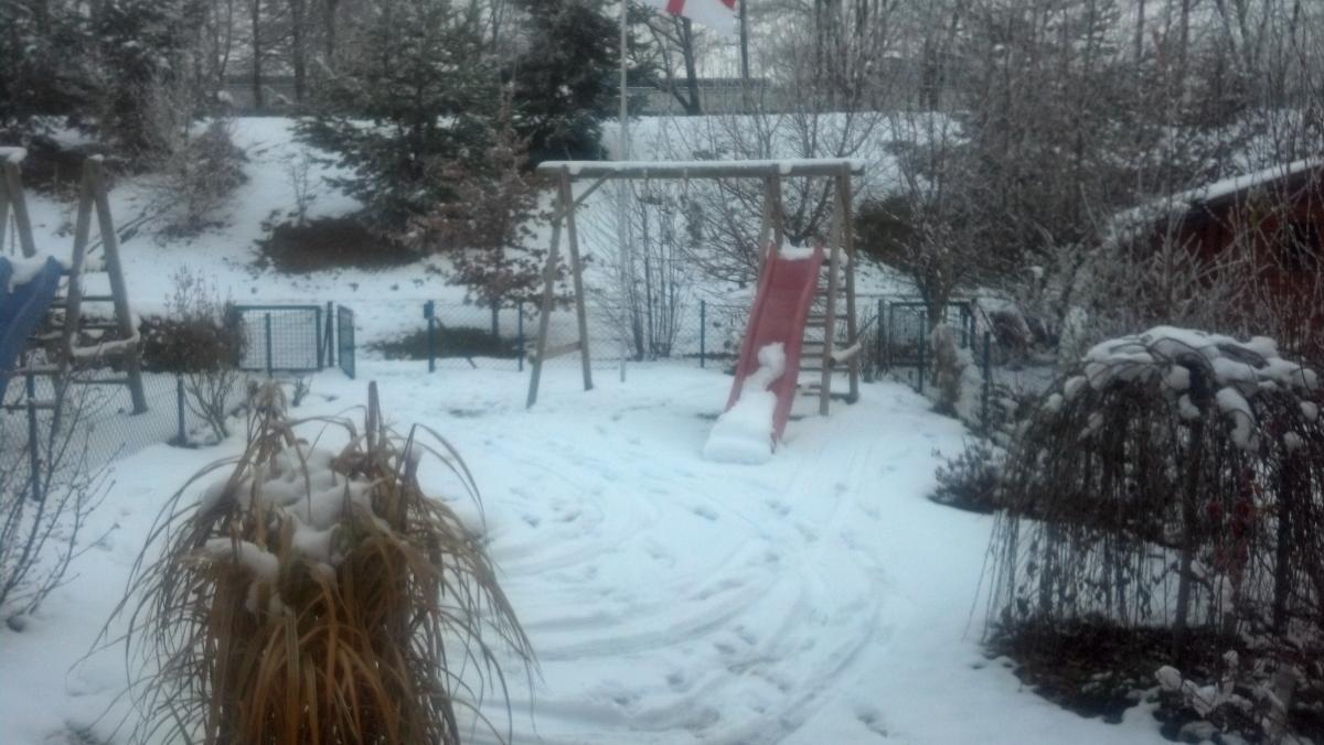 2012-12-01_15-19-16_919.jpg