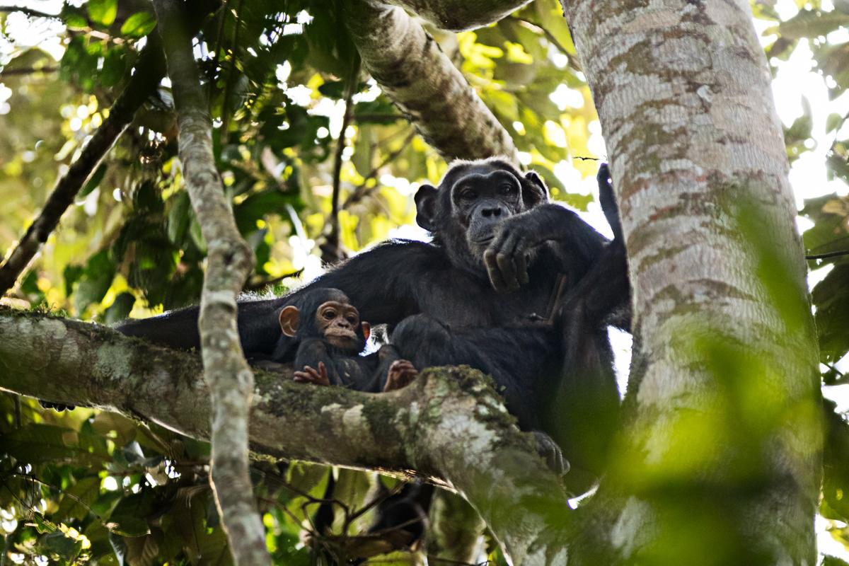 20180124.Uganda.IMG.0402.jpg