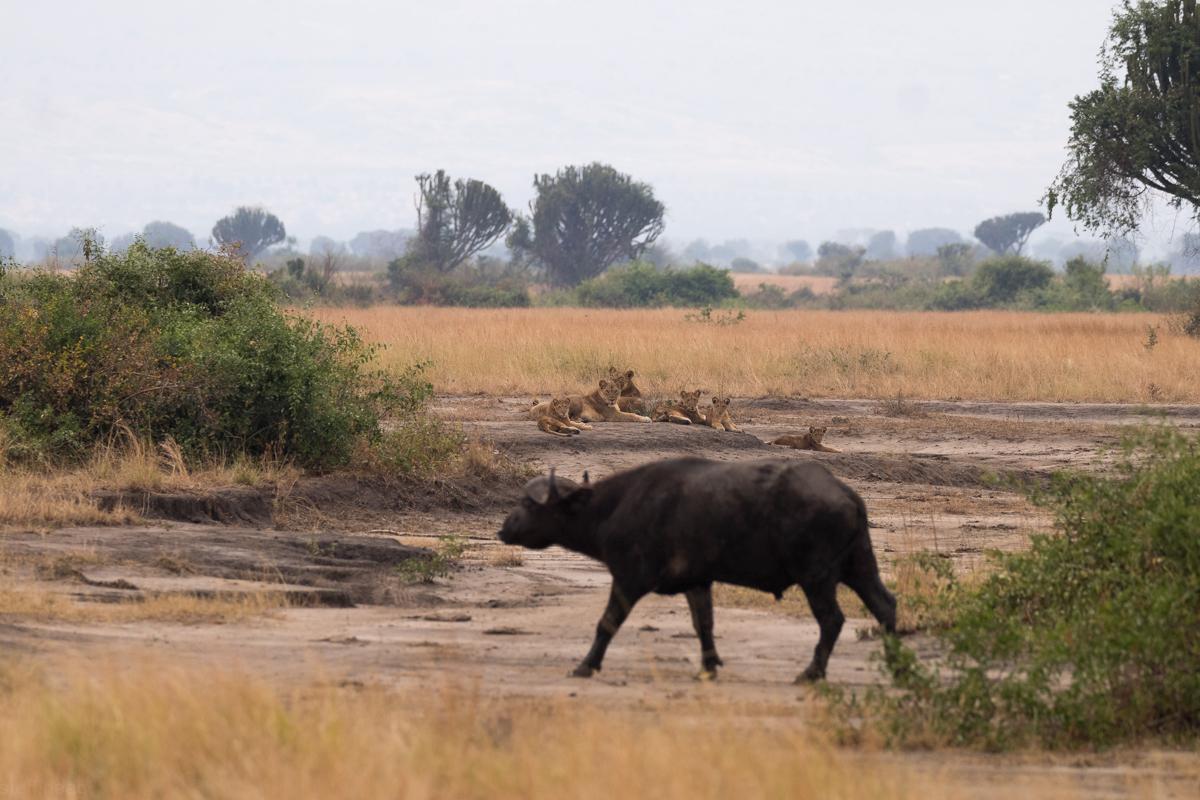 20180125.Uganda.IMG.0471.jpg