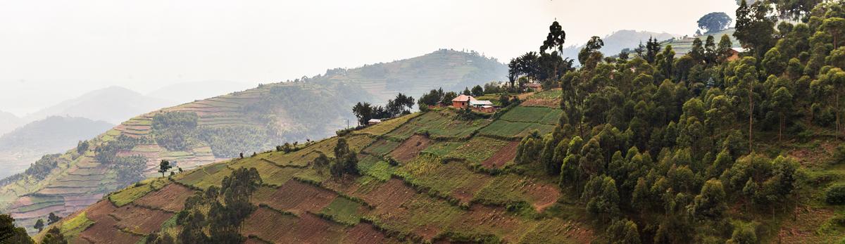 20180128.Uganda.IMG.0570.jpg