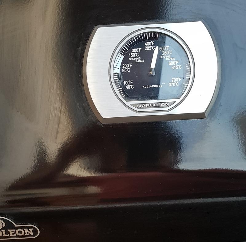 20200530_212115_Napoleon Rogue 365 SI Temperatur.jpg