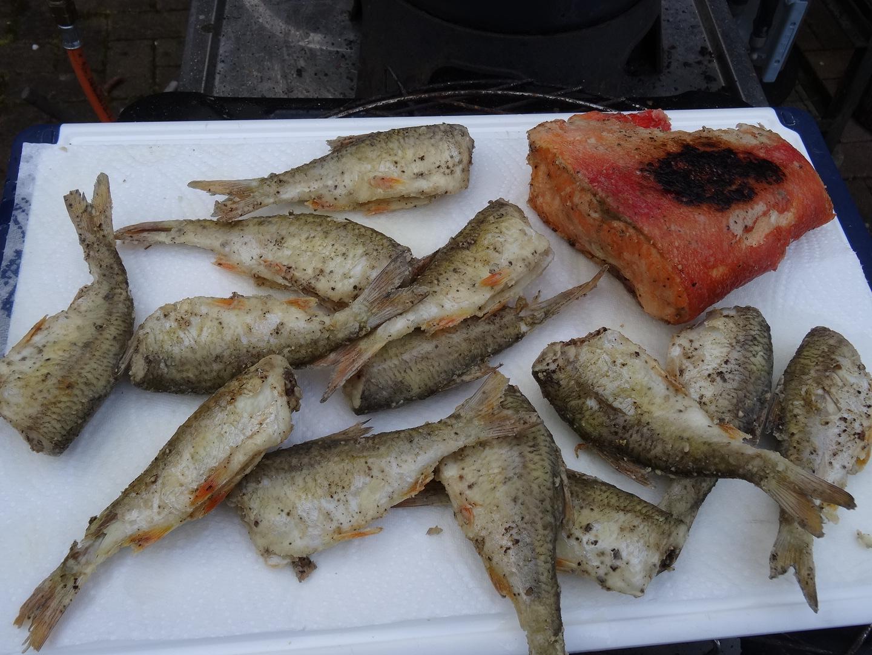 Eingelegte Bratfische   Grillforum und BBQ - www