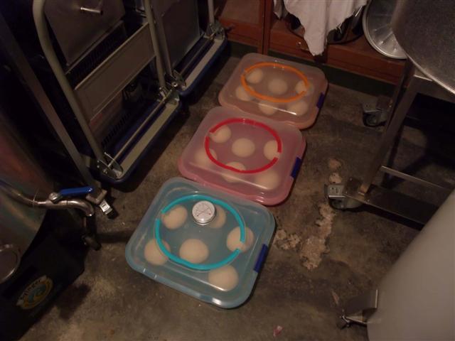 8Teigboxen am Kellerboden bei 8°C (Small).jpg