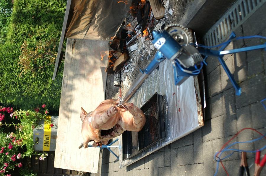 Alles Schwein (4).JPG