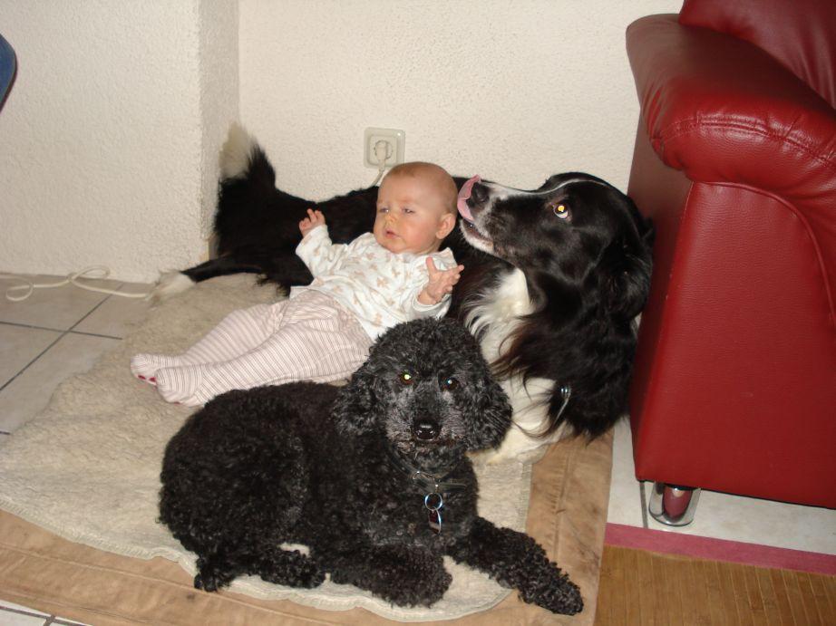 Baby mit Hunden.jpg