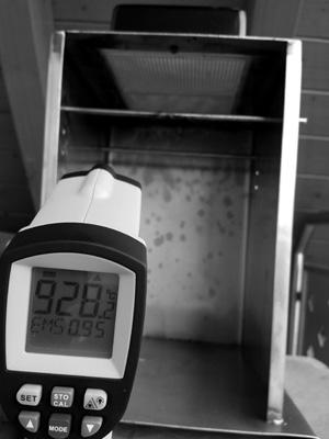 Beefer-Temperatur.jpg
