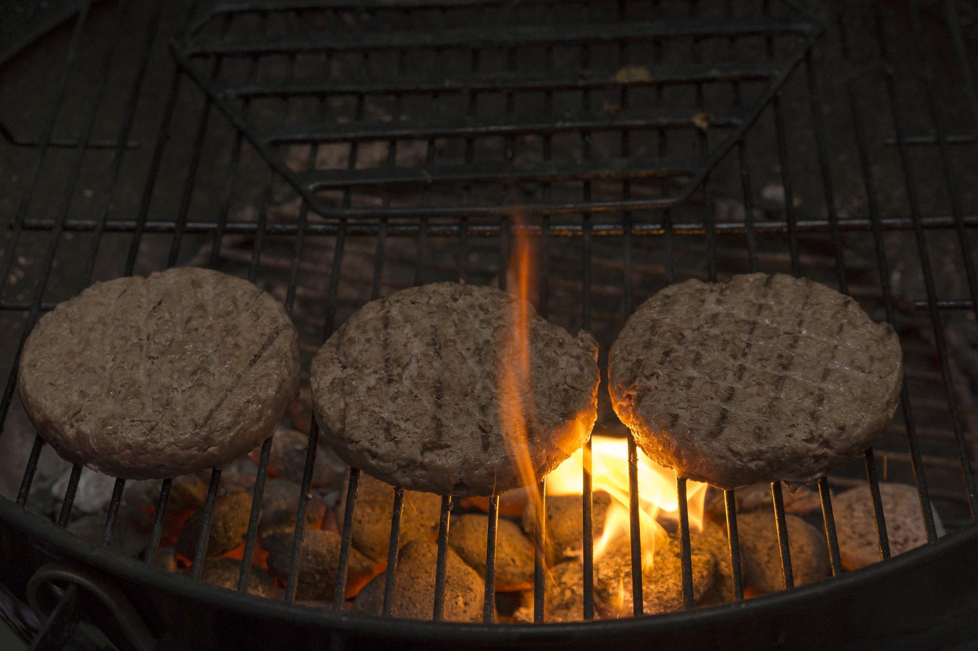 Burger Nr 18 - 007 klein.jpg