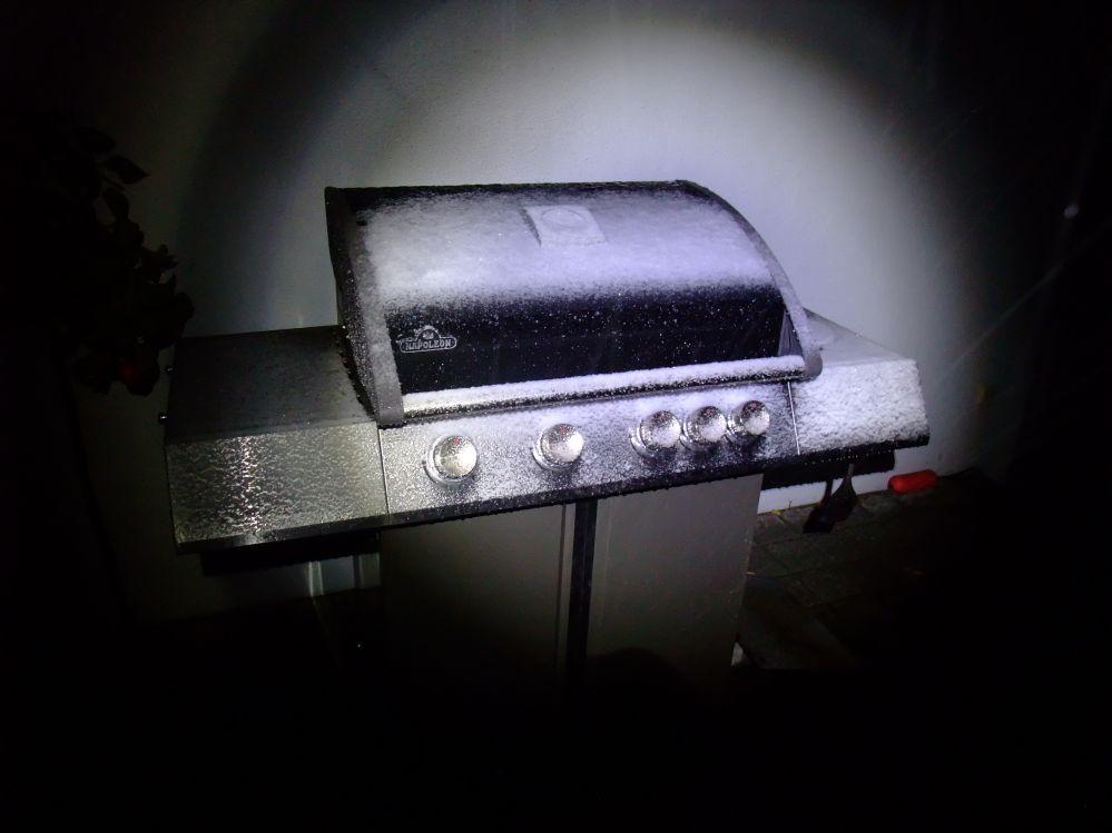 Burger_9.jpg