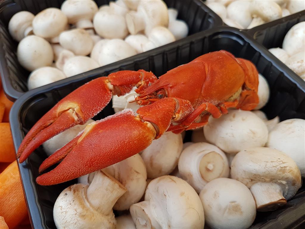 crawfish boil III (32).jpg