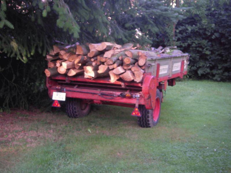 Das Holz.jpg