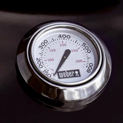 Deckelthermometer.jpg