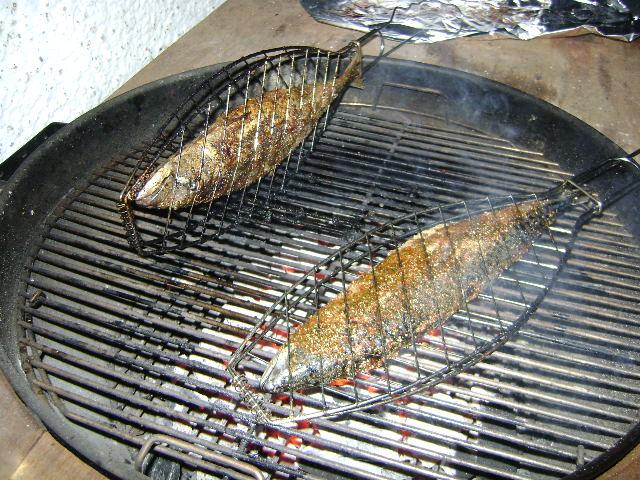 Fisch Gasgrill : Forelle direkt oder inderekt grillen ??? grillforum und bbq www