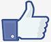 facebook-like klein.jpg