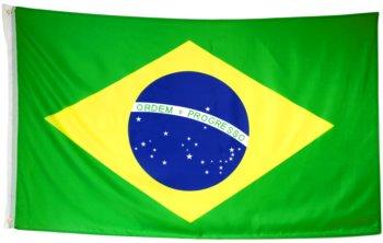 Fahne Brasilien-groß.jpg
