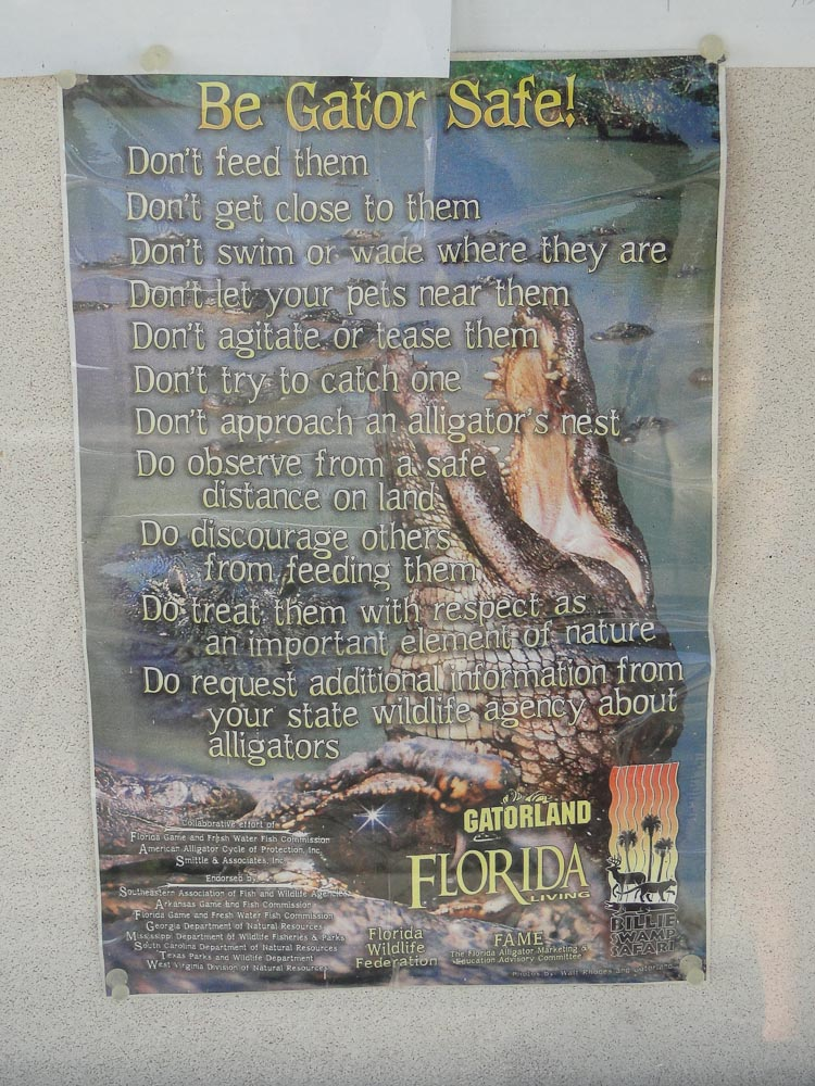 Florida-9.jpg