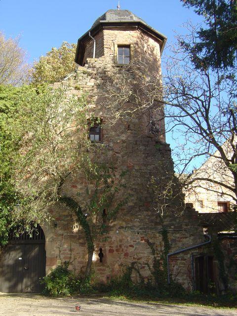 http://www.grillsportverein.de/forum/attachments/fred-zu-besuch-20-jpg.620030/