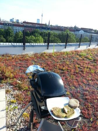Grill auf der Terrasse.jpg