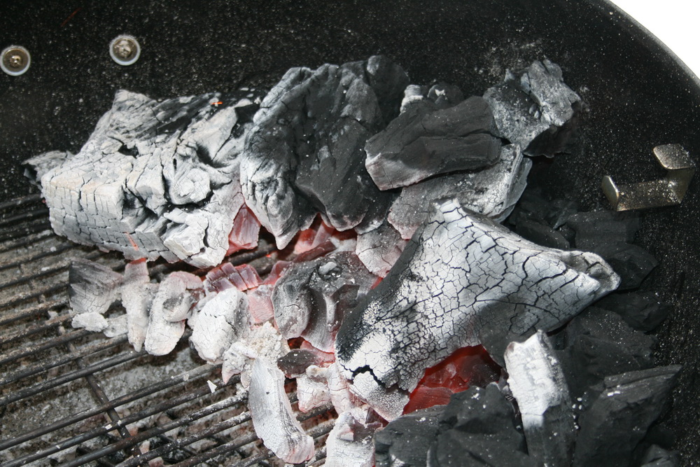 grillkohle-paraguay-chaco-4.jpg