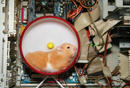 hamster1l.jpg