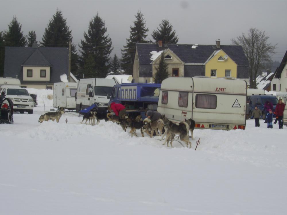 Hundeschlittenrennen 004.jpg
