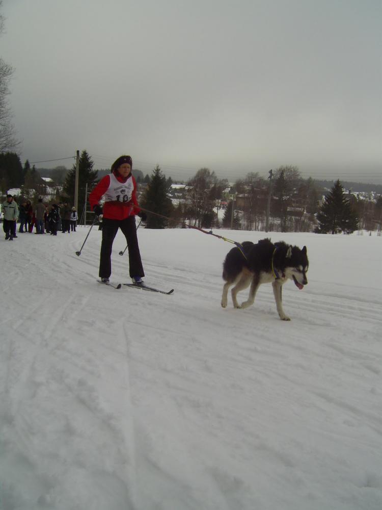 Hundeschlittenrennen 012.jpg
