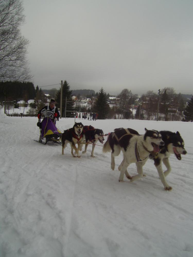 Hundeschlittenrennen 013.jpg