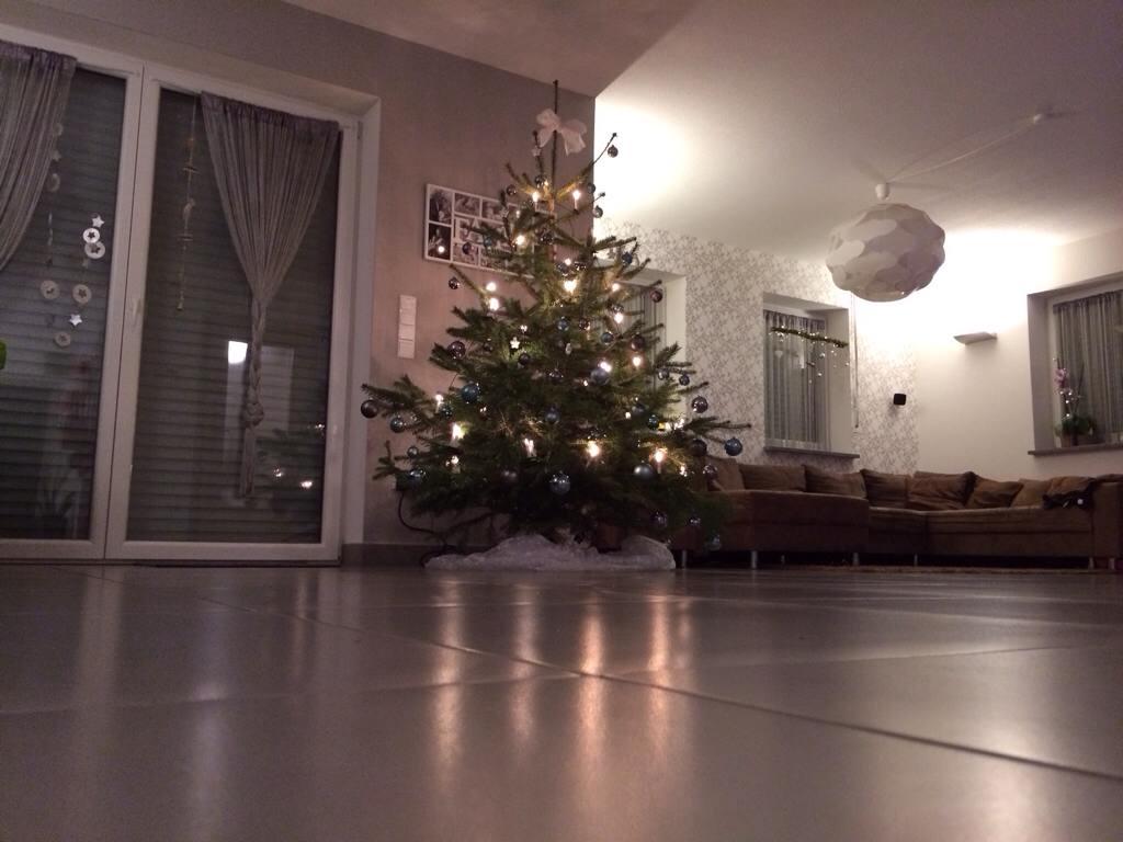 weihnachts christbaum posing 2012 seite 2 grillforum. Black Bedroom Furniture Sets. Home Design Ideas