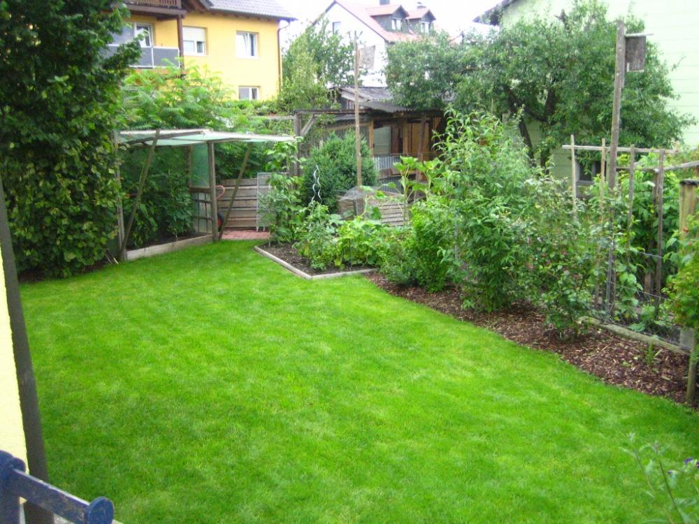 wer hat was angebaut au er gras in seinem garten seite 2 grillforum und bbq www. Black Bedroom Furniture Sets. Home Design Ideas