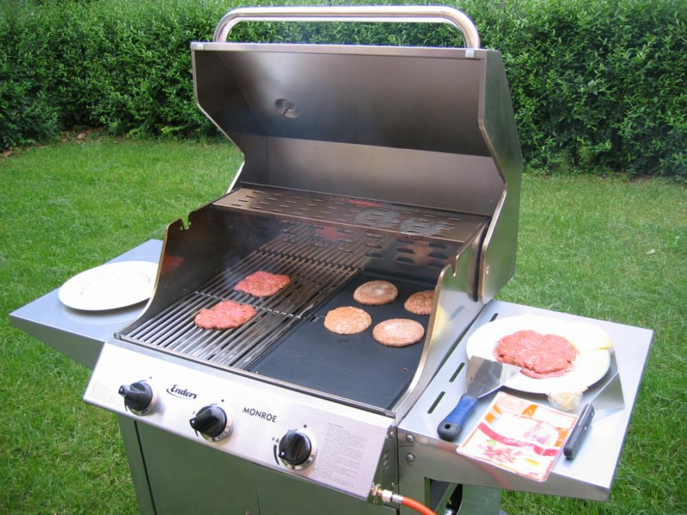 Image result for gas grill test