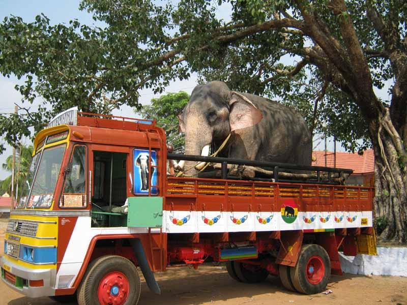 Indien015.jpg