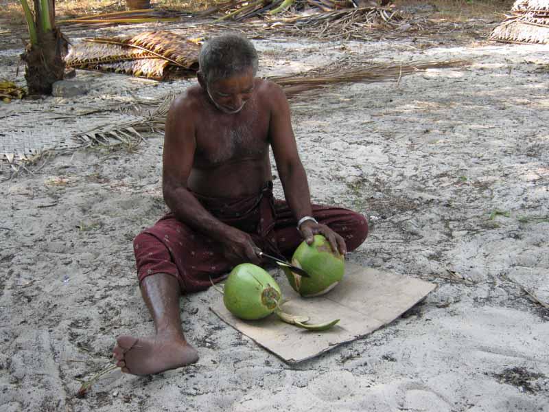 Indien026.jpg