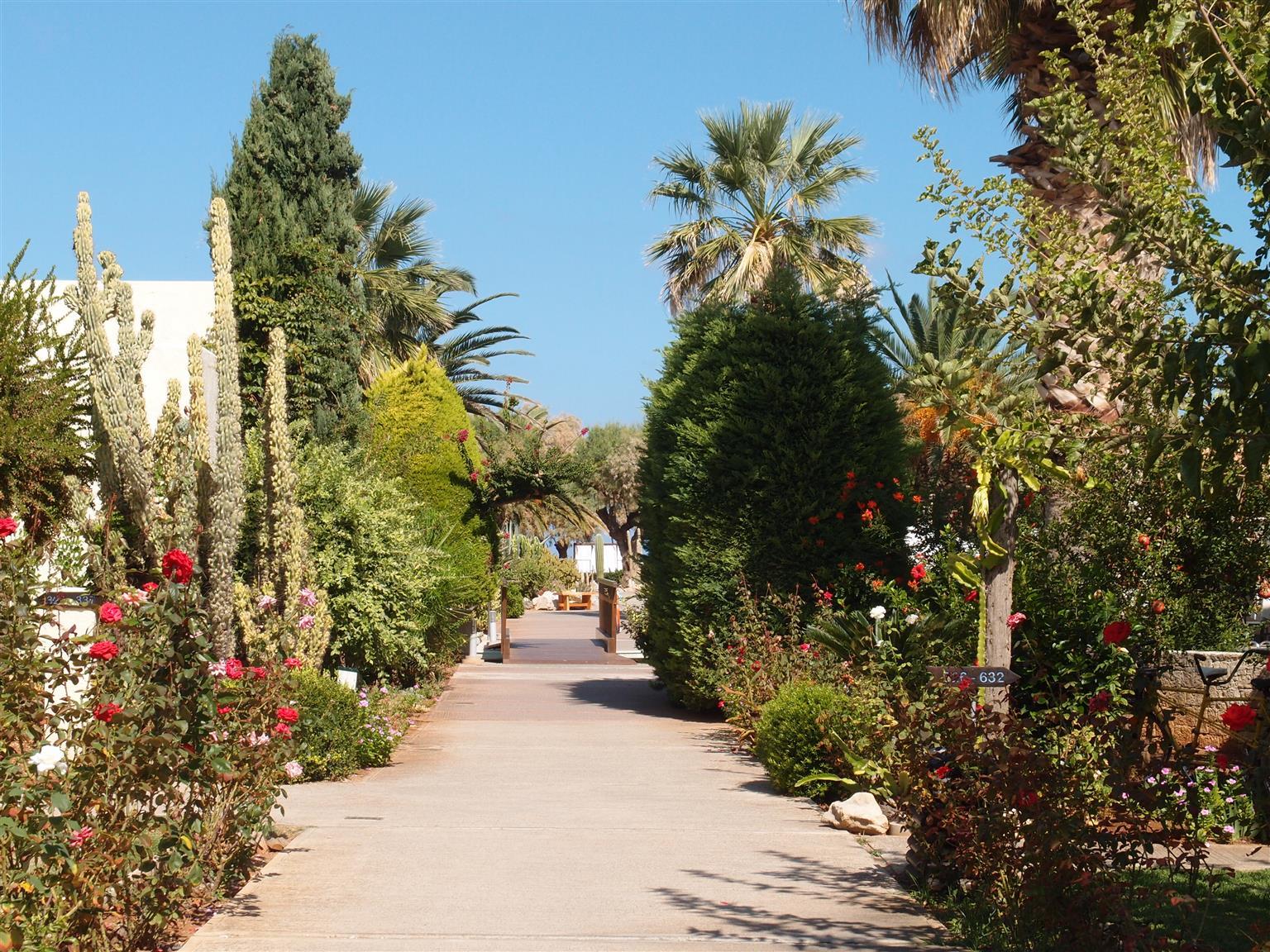 Kreta (10).JPG