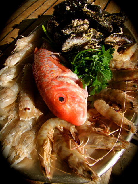 Meeresfrüchte Tajine02.jpg