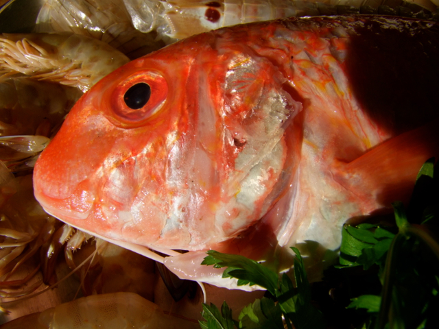 Meeresfrüchte Tajine03.jpg
