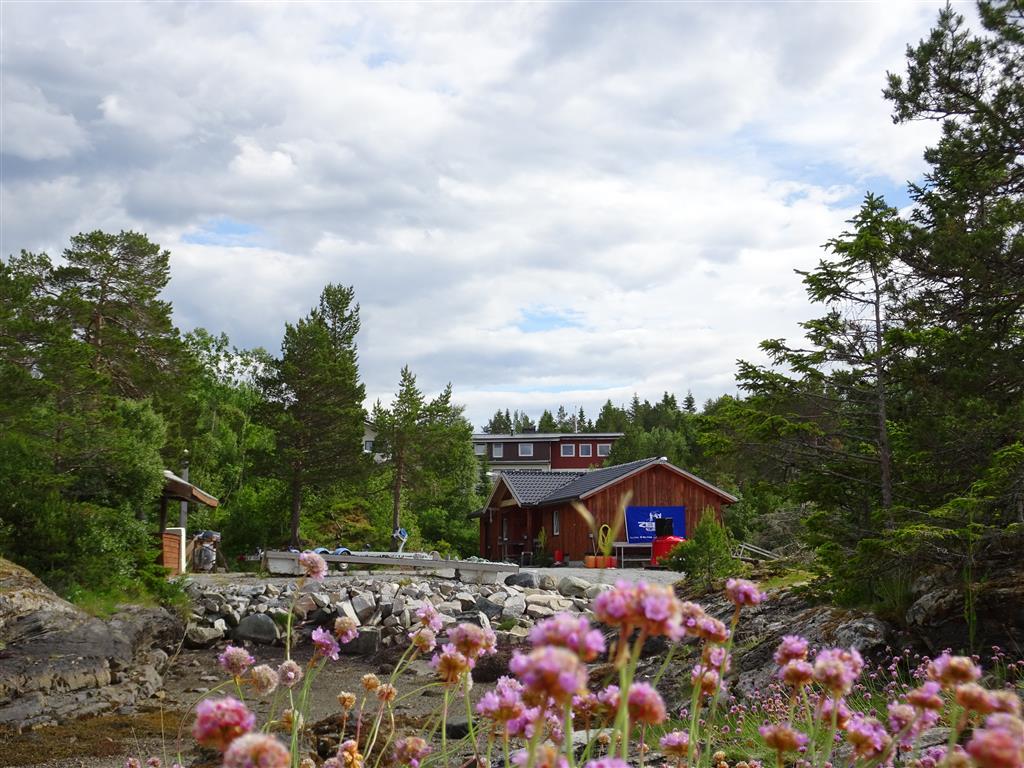 Norwegen_2016 (377).JPG